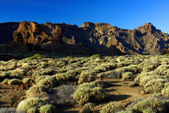 Sunset light over Teide National Park Stock Images