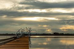 Sunset light reflects from the surface of the water and the wooden bridge. stock photos