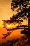 Sunset at the Lomsak cliff on Phu Kradung national park Royalty Free Stock Photo