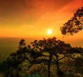 Sunset at the Lomsak cliff on Phu Kradung national park Royalty Free Stock Photography