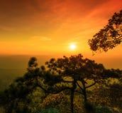 Sunset at the Lomsak cliff on Phu Kradung national park Royalty Free Stock Photography
