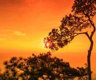 Sunset at the Lomsak cliff on Phu Kradung national park Stock Photos