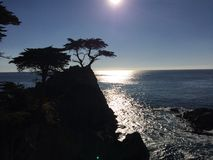 Sunset at the Lone Cypress Royalty Free Stock Photos
