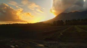 Sunset. At Lourensford wine estate stock image