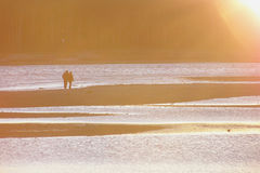Sunset Lovers Walking Royalty Free Stock Images