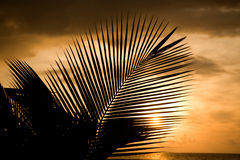 Sunset in maldives Stock Photography