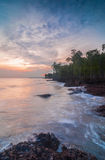 Sunset with mangrove roots. Sunset at aceh beach with mangrove roots royalty free stock image