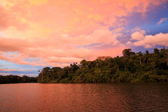 Sunset at Manu NP. Landscape of sunset in Manuriver Royalty Free Stock Photo