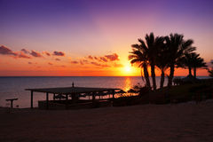 Sunset in Marsa Alam, Egypt Stock Images