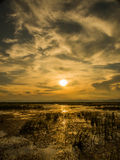 Sunset at the marsh. Sunrise at the marsh and cloudy sky Royalty Free Stock Image