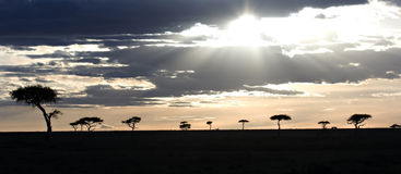 Sunset in Masai Mara Kenya Stock Photo