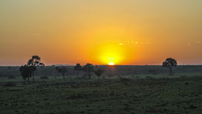 Sunset in Masai Mara National Park. Royalty Free Stock Images