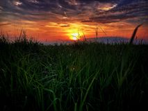 Sunset in the meadow. Red sunset in the meadow with dramatic sky and clouds Royalty Free Stock Images