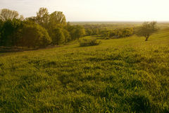 Sunset Meadow with Village Royalty Free Stock Photo