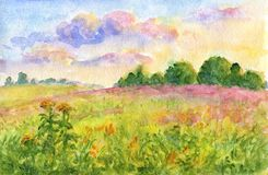 Sunset meadows - watercolor landscape Stock Photography