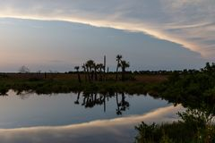 Sunset at Merritt Island National Wildlife Refuge, Florida. Sunset with clouds reflecting in a pond at Merritt Island National Wildlife Refuge, Florida, USA stock photos