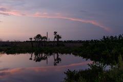 Sunset at Merritt Island National Wildlife Refuge, Florida. Sunset with clouds reflecting in a pond at Merritt Island National Wildlife Refuge, Florida, USA royalty free stock photo