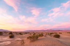 Mesquite Dunes in Death Valley, California, USA Stock Photos