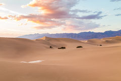 Sunset at Mesquite Flat Sand Dunes in Death Valley National Park, California, USA Stock Images