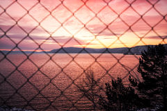 Sunset through the  metal-mesh fence Royalty Free Stock Photos
