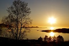 Sunset in midsund. Still water reflecting the sun, lensflare through a tree Stock Photos