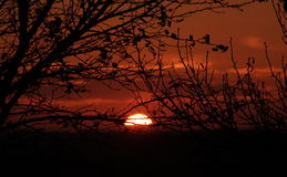 sunset midwest Fotografia Stock