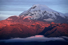 Sunset on the mighty Volcano Cayambe in Ecuador royalty free stock photography