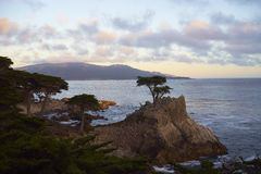 Sunset at 17 mile drive, coastal landmark Stock Photo