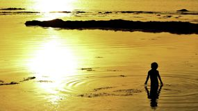 Sunset moment boy playing in water royalty free stock photography