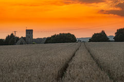 Sunset. Monstery wheat religion tree path Stock Photos