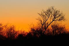 Sunset mood in December Royalty Free Stock Photography