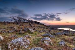 Sunset on the Moor Stock Photo