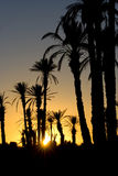 Sunset morocco. Beautiful African sunset at Morocco, North Africa Royalty Free Stock Photo