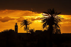 Sunset with mosque and date palm silhouettes. Stock Image