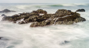 Moss Beach Royalty Free Stock Photography