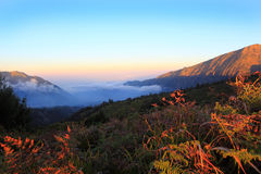 Sunset at Mount Bromo volcanoes Royalty Free Stock Photo