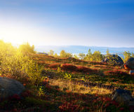 Sunset in mountain tundra stock photos