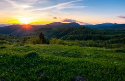 Sunset in mountainous countryside. Beautiful landscape of Carpathian mountains with grassy meadow, forested hills and blue sky with purple clouds Stock Photography