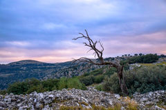 Sunset in the mountains. Cordoba Spain Stock Photography