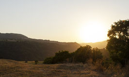 Sunset. In mountains, field, nature Stock Images
