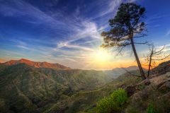 Sunset in the mountains of Gran Canaria island Stock Images