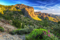 Sunset in the mountains of Gran Canaria island Stock Image