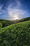Sunset. In The Mountains & green grass Stock Photo