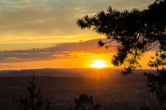 Sunset in the mountains. The last beams of the setting sun are shining over pine branches Stock Photos