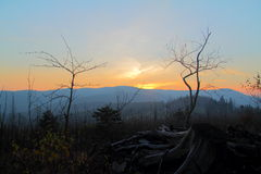 Sunset in the mountains. Old trunk in the mountains sunset. Beskid Śląski, Poland Stock Image