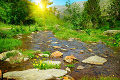 Sunset in mountains and stream Royalty Free Stock Image