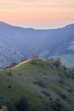 Sunset at Mt Diablo State Park, Contra Costa County, California Stock Photography