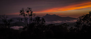 Sunset at Mt Warning. View Mt Warning, New South Wales, with colourful sunset Royalty Free Stock Photos