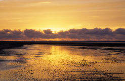 Sunset in the mudflat Stock Photo