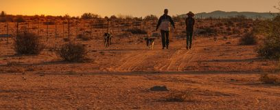 Sunset in Namaquland South Africa royalty free stock photography